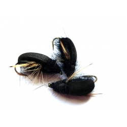 Vabalas (juod.)